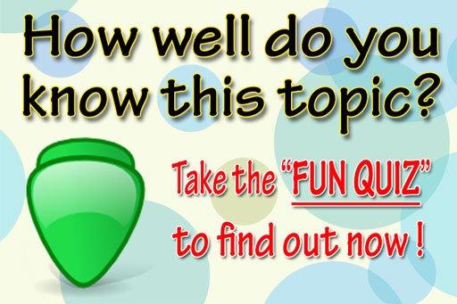 Polymer Clay Fun Quiz