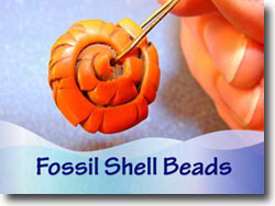 Fossil Shell Beads