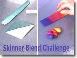 Skinner Blend Challenge