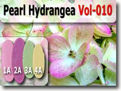 Pearl Hydrangea Color Palette