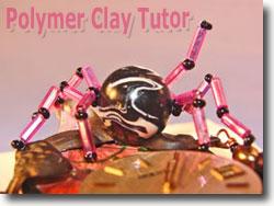 Pink Widow Spider