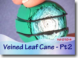 Veined Leaf Cane