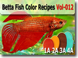 Betta Fish Polymer Clay Color Palette