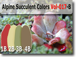 Blue Succulent Palette Kato Polyclay Color Recipes