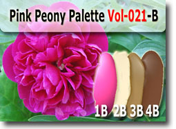 Peony Flower Color Palette
