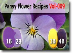 Pansy Flower Kato Polyclay Color Recipes
