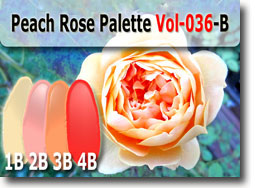 Peach Rose Color Palette by Polymer Clay Tutor