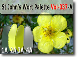 St John's Wort Color Palette by Polymer Clay Tutor