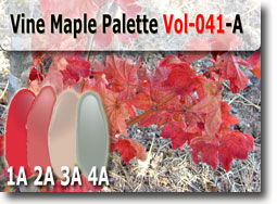 Vine Maple Color Palette by Polymer Clay Tutor