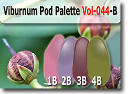Viburnum Pod Color Palette by Polymer Clay Tutor