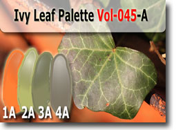 Ivy Leaf Palette by Polymer Clay Tutor