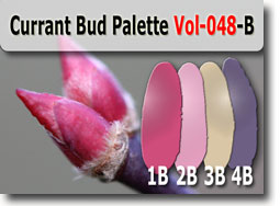 Current Bud Palette by Polymer Clay Tutor