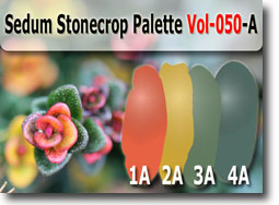 Sedum Stonecrop Color Palette by Polymer Clay Tutor