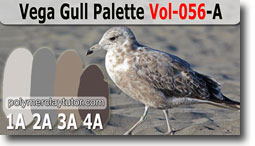 Vega Gull Palette by Polymer Clay Tutor