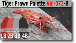 Tiger Prawn Palette by Polymer Clay Tutor