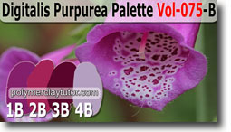 Digitalis Purprea Palette by Polymer Clay Tutor