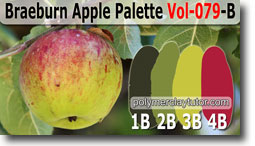 Braeburn Apple Palette by Polymer Clay Tutor