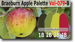 Braeburn Apple Palette by Polymer Clay Tutor